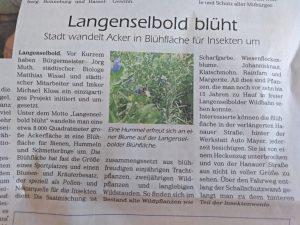 Zeitungsartikel vom Langenselbolder Bote zum Projekt Langenselbold blüht.